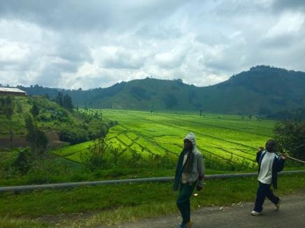Ruanda 3
