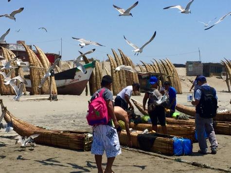 Chegada dos pescadores á praia de Pimentel.