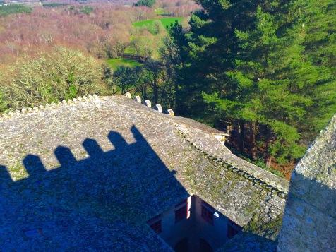 Tellados da fortaleza dende o torreón