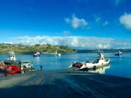 Ferri coa illa de Quinchao ao fondo
